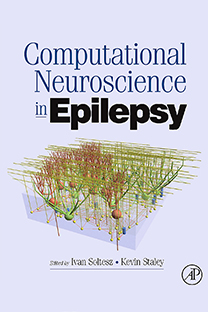 Computational Neuroscience in Epilepsy